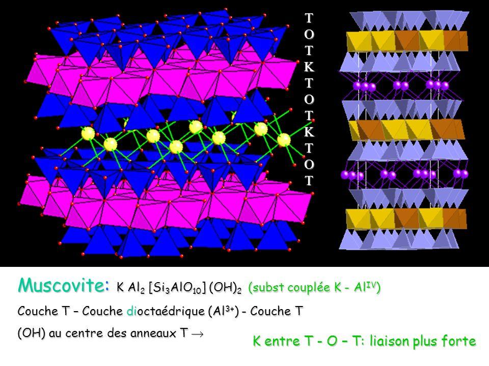 Muscovite: K Al2 [Si3AlO10] (OH)2 (subst couplée K - AlIV)